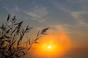 lever_du_soleil_espoir